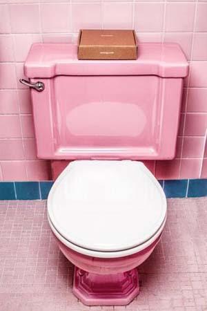 Toilet Types